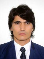استاد عبدالله انصاری